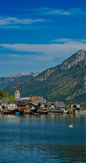 Swan in lake against Hallstatt village on Hallstatter See in Austrian alps. Salzkammergut region, Austria
